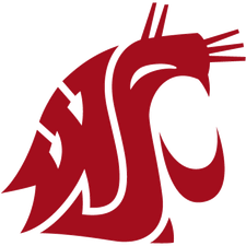 Washington State Logo